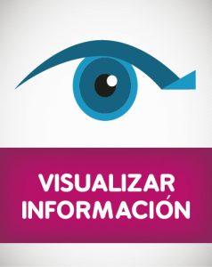 Visualizar Información